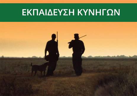 Εκπαίδευση Κυνηγών ( 15 Μαθήματα )